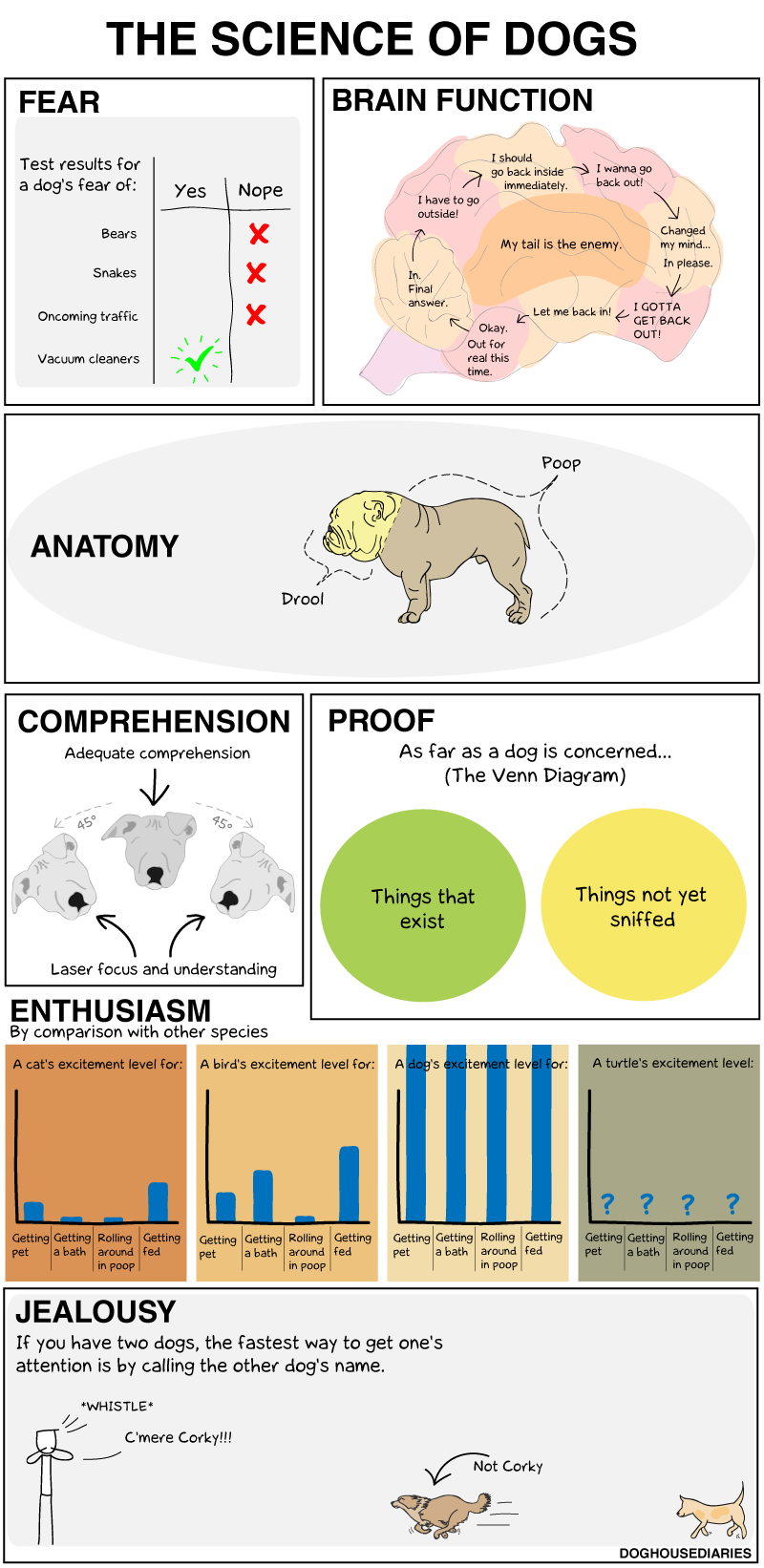 DOGHOUSE | The Science Of Dogs