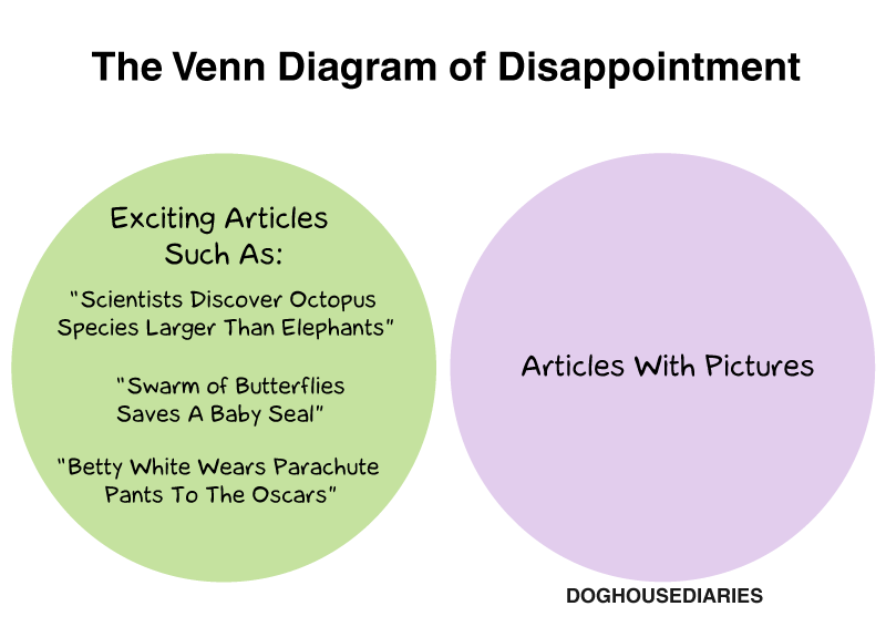 Doghouse The Venn Diagram Of Disappointment