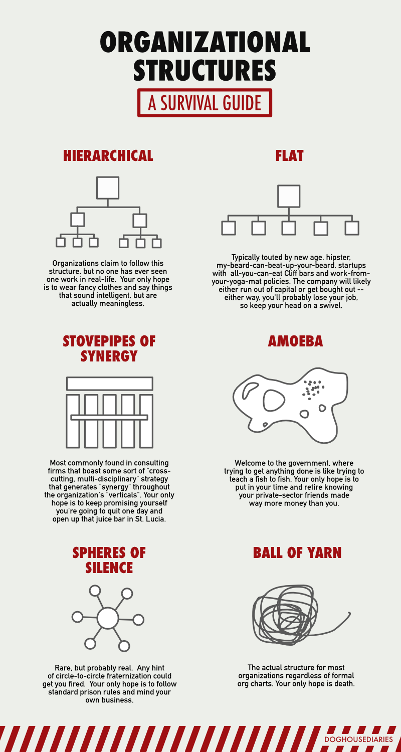 Organizational Structures: A Survival Guide